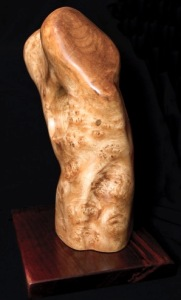 Torso - another view